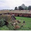 Warmińska wieś Żywkowo jest bocianią stolicą Polski. Na dziewięć gospodarstw przypada tu do 38 bocianich par. Nic dziwnego, że na dachu jednego z budynków gospodarskich pomieścić się musiało aż 5 gniazd. (foto P. Szymoński)